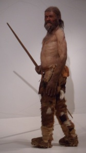 A reconstruction of Ötzi, from the Südtiroler Archäologiemuseum, Bolzen.