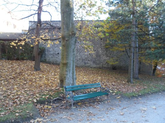 A park with deciduous trees and fallen leaves with a bench in the foreground and a heavy stone wall in the background