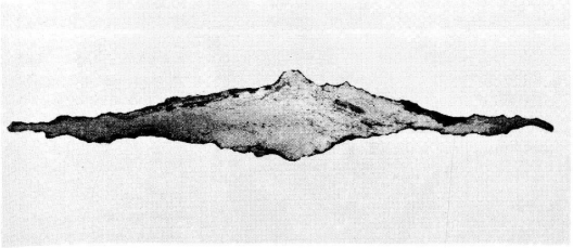 A cross-sction, B&W photo of a two-edged blade with a lumpy structure